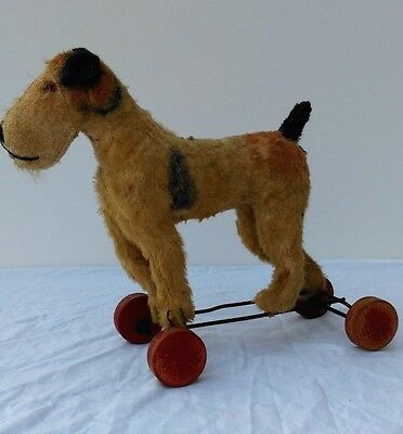 Great,antique, STEIFF dog FOX on wooden wheels,1920´s ,wow