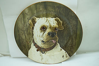 Antique Cauldon England Plate Dog Series Mastiff Bulldog Portrait 1905 Signed