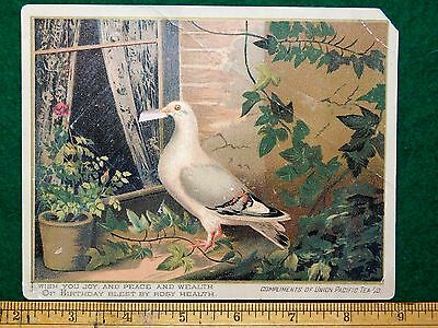 1870s-80s Union Pacific Tea Co, Pigeon Bird Delivering Letter Victorian Card #U