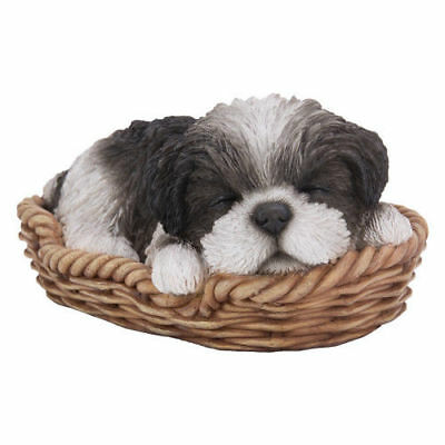Black and White Shih Tzu Puppy in a Basket Pet Pal by Vivid Arts