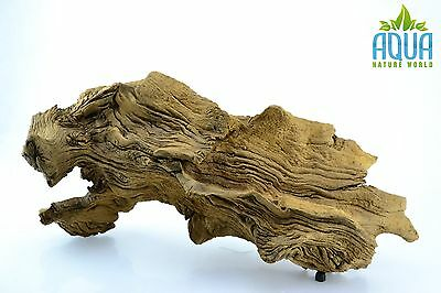 (A-5256)  Oak Bogwood Aquarium Wood (Red moor) Size L
