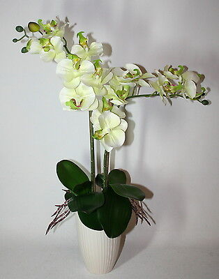 Artificial Silk White Green Orchid Flower Arrangement With Leaves in Ceramic Pot