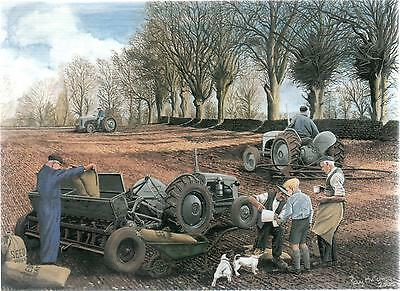 Ferguson Tractor Sowing The Seed--Greetings Print Card--Ray Hutchins