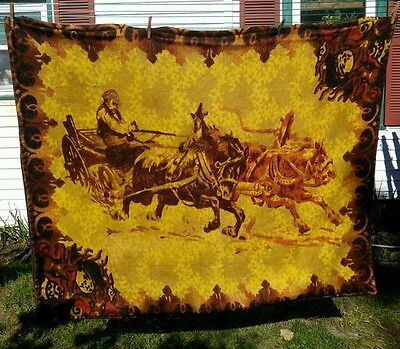 Vtg Antique Victorian Horse Hair Throw Carriage Sleigh lap Buggy Blanket Wool