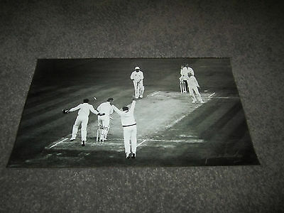 Cricket Shane Warne Ball Of The Century Official Hand Signed Photo Print