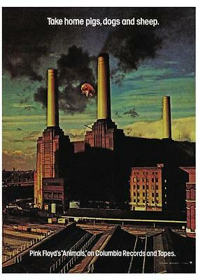 Pink Floyd  POSTER  Animals **LARGE** Album Promo Roger Waters David Gilmour