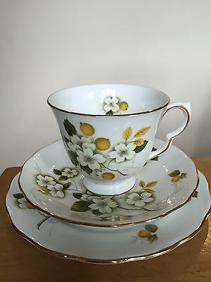 Vintage Queen Anne Tea cup and Saucer and Side Plate