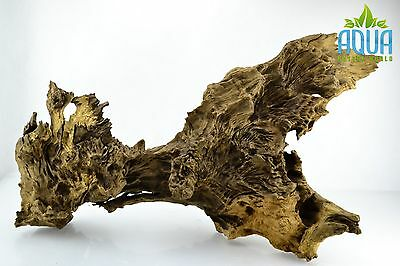 (A-5686)  Oak Bogwood Aquarium Wood (Red moor) Size XL