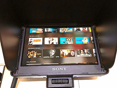 Sony CLM-V55 Portable Clip-on Full HD LCD Monitor w/ Sony Battery and charger