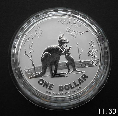 Australia 2007 999 Fine Silver Kangaroo Frosted $1 Dollar Coin 1 Troy Ounce