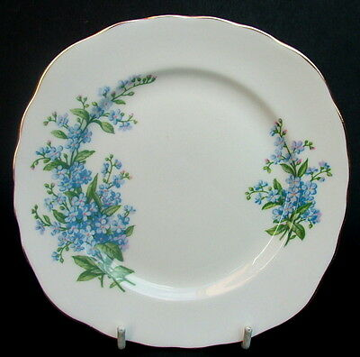 Vintage Queen Anne Forget me Not Blue Flowers Side or Bread Size Plates in VGC