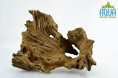 (A-5586)  Oak Bogwood Aquarium Wood (Red moor) Size L