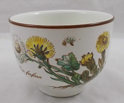Villeroy & and Boch BOTANICA finger / individual bowl BE453