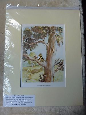"Large Winnie The Pooh Print In Mount New In Packaging 19"" x 15"""