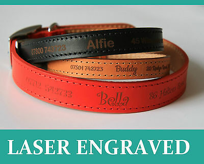 Personalised Dog Puppy Collar Tag, Ancol Quality leather, Laser Engraved UK made