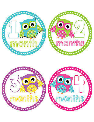 Owl-Themed Baby Belly Stickers ~ Baby Milestone Stickers (201)