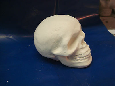 """New Latex Mould Mold Small Skull 3"""" Length --  A ---"""