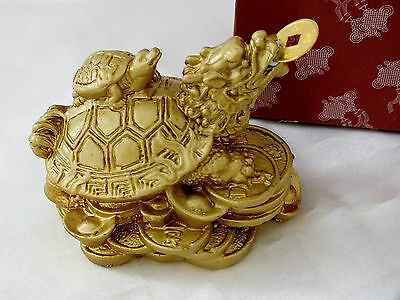 Chinese Gold Dragon Head Turtle Tortoise Feng Shui Coin Birthday Party Gift Bx