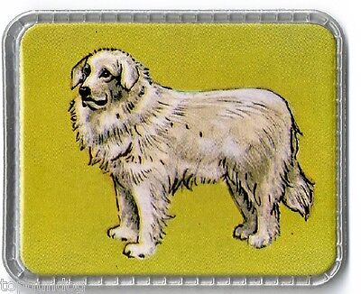 Unusal Great Pyrenees Dog French Milk Card 1950/60s