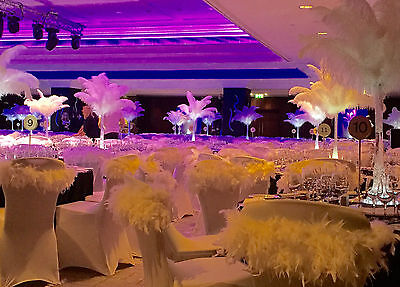 Ostrich Feather Wedding Centerpiece party event