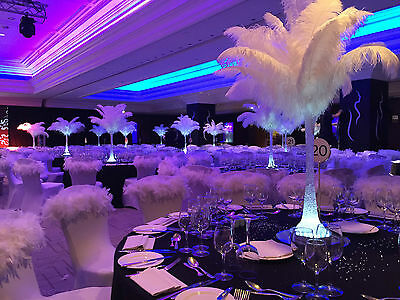 Ostrich Feather hire wedding christmas party events all feathers boa fancy dress