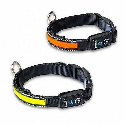 Collier lumineux LED Tractive pour chiens - 2 tailles.
