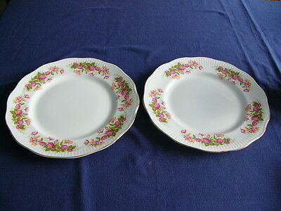 """2 x Vintage Queens Rosina China """"Woman and Home"""" 10.5"""" Dinner Plates"""