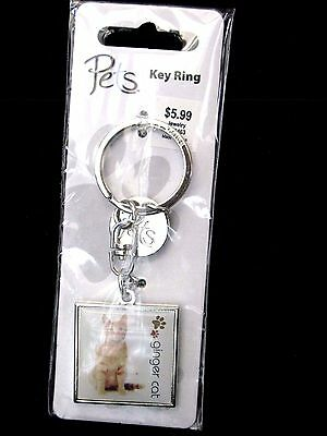 New Ginger Cat Pets Key Ring