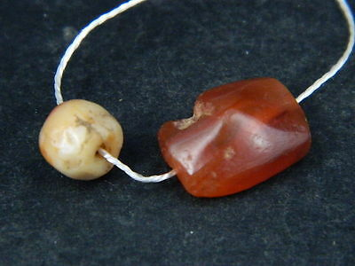 Ancient Carnelian 2 Beads Roman 200 BC    #B1137