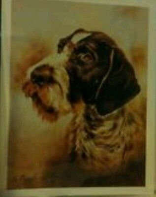 Ruth Maystead Dog Note Cards German Wirehaired Pointer