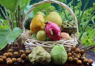 Fruits Basket -South East Asia Tropical Fruit Gift Basket FREE DELIVERY