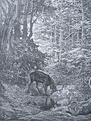 Fontaine's Fables Gustave Dore Antique Print C. 1880 (202) Stag