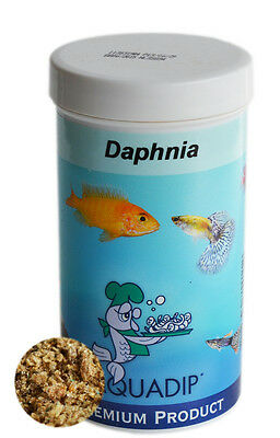 Daphnia 100 ml Pot