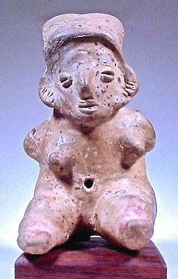 Pre-Columbian Colima Bound Female Figure Coa