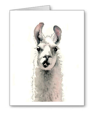 Llama Note Cards With Envelopes
