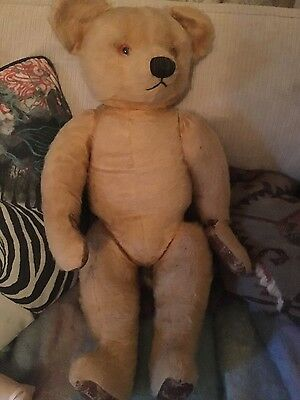 Huge Old Antique Vintage Brown Teddy Bear 98cm Tall / Straw-Filled /  European