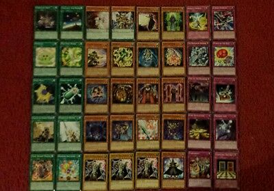 Yu-Gi-Oh Spellcaster Deck - 40 cards complete BONUS 5 cards