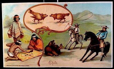 Arbuckle Bros Coffee 1893 Trade Card Chili #26 History Of Sports New York City