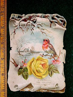 Lovely Die Cut Bird Rose Snow Ice, G. Frank Lippold Druggist Cumberland MD 1 F37
