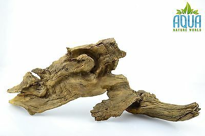 (A-5654)  Oak Bogwood Aquarium Wood (Red moor) Size L