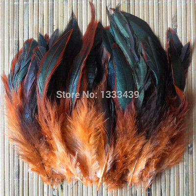 Beautiful  Rooster Feathers Craft Fascinator Costume Many Colours  10-20cm