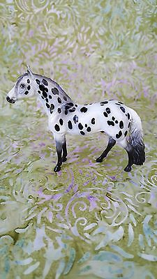 Peter Stone  Andalusian Chip Glossy