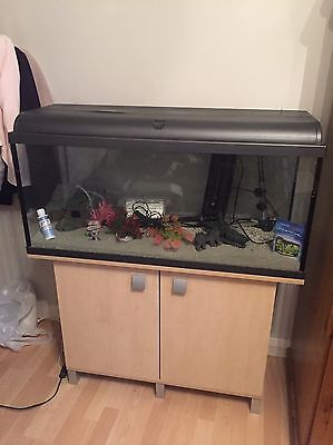 160 Litre Fish Tank with Cabinet