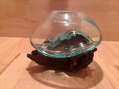 Unique! STUNNING! Hand-blown glass bowl on driftwood. (s6)