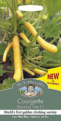 Mr Fothergills Courgette Cocozelle v Tripolis Seed