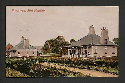 Flint Mountain - Bungalows - colour printed postcard
