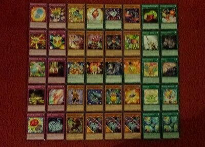 Yu-Gi-Oh Performapal and Performage Deck - 40 cards complete BONUS 5 cards