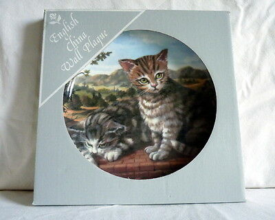 Royal Vale Kittens Boxed Decorative Plate in Excellent Condition