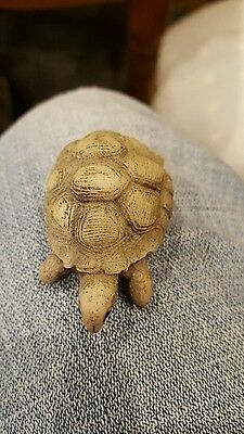 small tortoise ornament