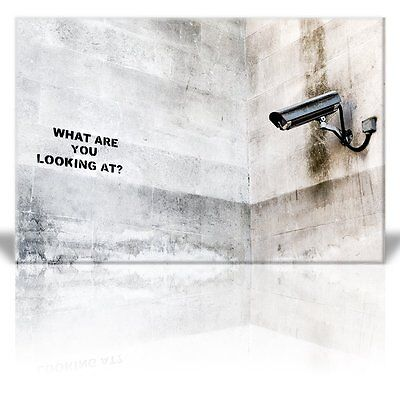 Wall26 - Canvas Print Wall Art - What are you looking at? - Street Art - 24 x 36